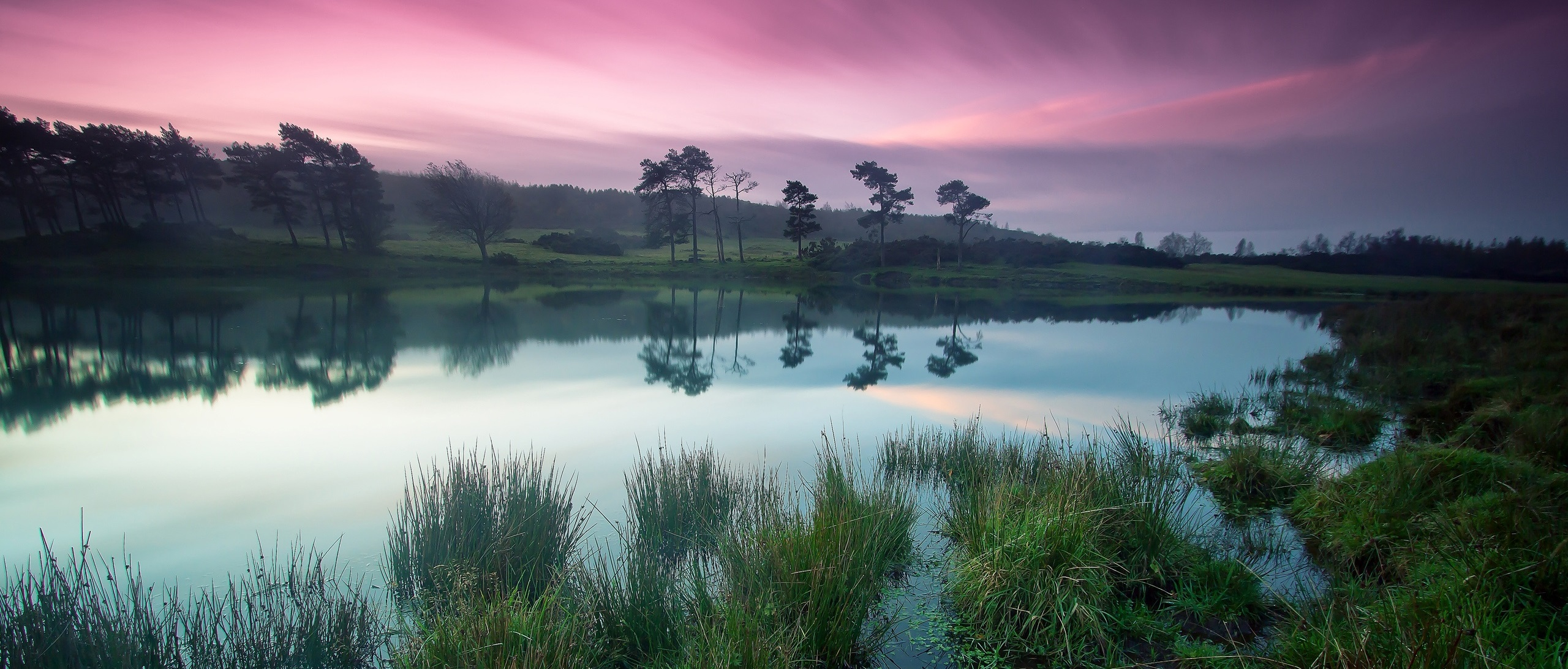 Dusk-beauty-tranquil-lakes-green-trees-purple-sky_2560x16001